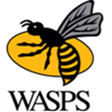 Wasps Rugby Football Club